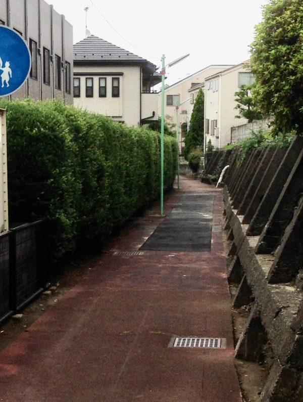 散歩道(足跡追って)