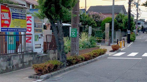 保育園前の道